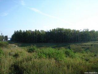 Елец. Парк Сорокалетия Октября. Фото 1