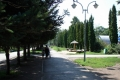 lipetsk_park_pobedy_26